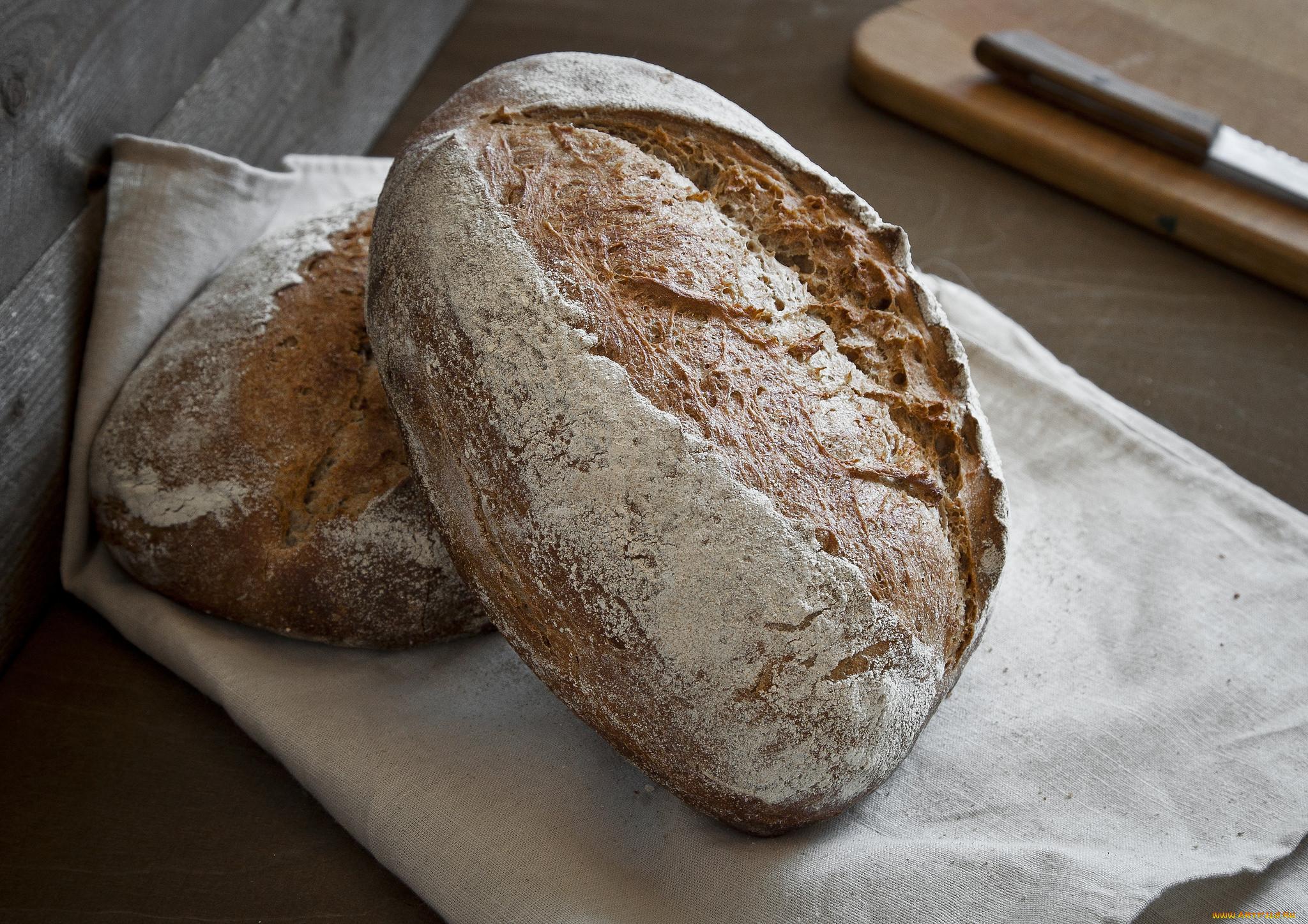 поделки говорящий хлеб картинки вполне